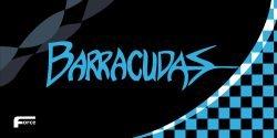 Barracudas Towel